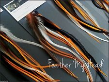 12 Harley Hog Wild Mix Natural Feather Hair Extension Feathers Do It Yourself