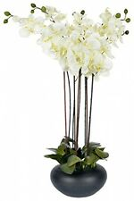 Homescapes Large Oriental Style Cream Orchid With Silk Flowers In Black Round -