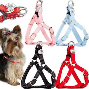 DogCentre® Dog Harness York Puppy Small Pet Adjustable Soft Leather Vest Collar