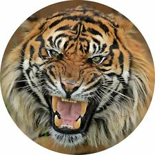4x4 Spare Wheel Cover 4 x 4 Camper Graphic Sticker Wild Cats Bengal Tiger aa149