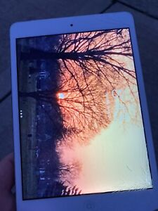 ipad mini 2 cracked screen