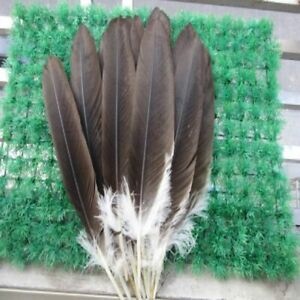 Rare Natural Eagle Feathers For Party Accessories And Jewelry Decoration Crafts