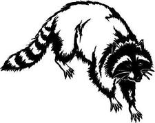 Racoon Vinyl Decal Car Truck Trailer RV Boat Sticker 18