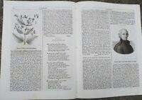 1842 L''ALBUM DI ROMA: CARNEVALE DI HAITI; GIUSEPPE PIAZZI DA PONTE VALTELLINA