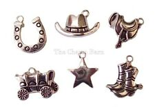 Western Cowboy Boot Saddle Horseshoe Star Horse Craft Charms Jewelry Earrings