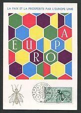 SPAIN MK 1962 EUROPA CEPT BIENE BEE MAXIMUMKARTE CARTE MAXIMUM CARD MC CM d3424