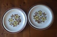 "2 Sierra Stoneware Dinner Plates Yellow & Brown Floral ""Blossoms"" - 10"" Japan"