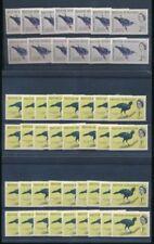 1 Block Width Mint Never Hinged/MNH British Colonies & Territories Stamp Blocks