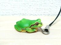 Kitan Club Nature Techni Colour JAPANESE TREE FROG green animal figure