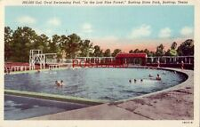 """1945 SWIMMING POOL """"In the Lost Pine Forest"""", BASTROP STATE PARK, TEXAS"""