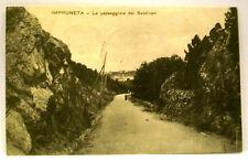 IMPRUNETA - La passeggiata dei Sassineri [picc. viagg. b/n 1919]