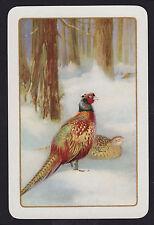 1 Single VINTAGE Swap/Playing Card EN BIRD 'PHEASANT PH-1-2-E ? Smooth Unlisted