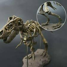 Rex Tyrannosaurus Skeleton Dinosaur Collector Top Trex Educational Model Puzzle