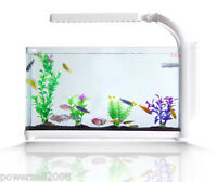 14L Glass Mini Open-ended Small Ecological Gifts Aquarium/Fish Tank White &$