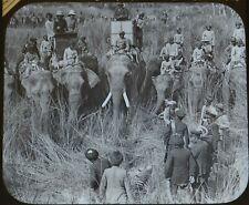 Antique Magic Lantern Slide Photo India Delhi Durbar Tiger Hunt King & Maharajah