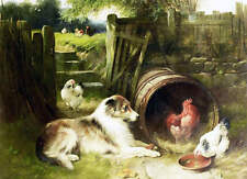 Collie Dog Chickens Barrell by Edgar Hunt vintage art