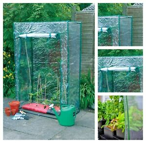 Outdoor Garden Plant Tomato Grow Reinforced Frame & Cover Greenhouse Growbag NEW