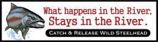 """What Happens-Wild Steelhead""  fishing decal / sticker"