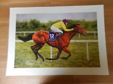 Sea the Stars by Peter Bainbridge horse print racehorse picture