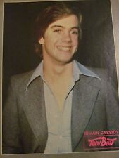 Shaun Cassidy, Full Page Vintage Pinup