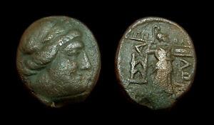 AE19 Thessalian League Magistrate ΙΠΠΟΛΟΧΟΣ