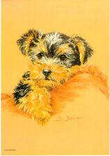 Yorkie Yorkshire Terrier Puppy Print by UK Artist Sue Driver