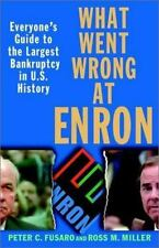 What Went Wrong at Enron: Everyone's Guide to the Largest Bankruptcy in U.S. His