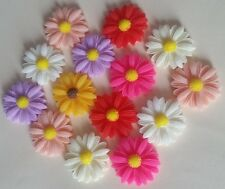 10 DAISY FLOWER CABOCHONS 22mm ~ FLATBACKED RESIN ~ Assorted Colours