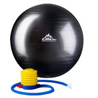 Black Mountain Products 2000lbs Exercise Stability Ball with Pump (Black) 55cm