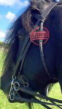 9cm equina Cavallo pony in tessuto Briglia DISCO BADGE Stallion per mostrare