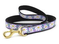 Up Country - Dog Puppy Design Leash - Made In USA - Daisy - 4, 6 Foot