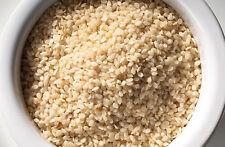 1 kg Sesam geschält Top Qualität  Sesam weiß 1000g