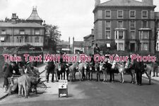 SF 600 - Donkeys On Collection Day, Lowestoft, Suffolk - 6x4 Photo