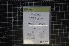 Stampin Up WETLANDS Ducks Goose Thank You Birthday Thinking of You