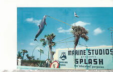 Porpoise High Jumps at Marineland St. Augustine Florida Chrome Postcard 1247