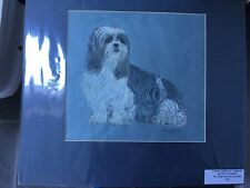 More details for large original watercolour art lhasa apso,shih tzu,dog signed/dated picture 1987