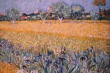 V. Van Gogh-Field of Fl Ed. 300 uds Firma impresa. Num. a lapiz. Certif. Edicion