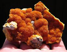 Excellent Bright Orange Botryoidal Orpiment Crystals On Matrix. Peru