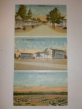 Lot of 3 PINE CAMP Camp Drum POSTCARDS Jefferson Co, NY Pre-FORT DRUM