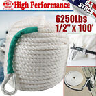 12x100 Twisted 3 Strand Nylon Anchor Rope Boat Wthimble Rigging Line 6250lbs