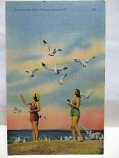 """1944 POSTCARD """" FEEDING THE GULLS, CONEY ISLAND NY """" PRETTY GIRLS, BATHING SUITS"""