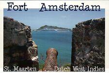 Cruise Ships from Fort Amsterdam St. Martin Sint Maarten Caribbean Ship Postcard