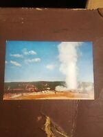 Collectible  Vintage postcard Gigantic  size Collectible USA Yellowstone