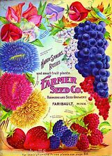 Farmer Roses & Fruit Vintage Flowers Seed Packet Catalogue Advertisement Poster