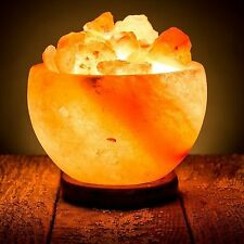 Himalayan Salt Lamp Natural Gift Light Crystal Pure Rock Fire Bowl Purifies Air