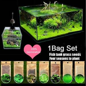 New Aquarium Plant Seeds Fish Tank Aquatic Water Grass Foreground Easy Plants 5g