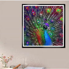 5D colored peacock full drill diamond Painting Cross Stitch home decorPB