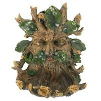 Green Man Wall Plaque Bird Feeder Nature Of The Forest Wood Spirit Wiccan Pagan