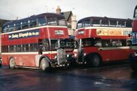 PHOTO Oxford AEC Regent III 910 PWL421 in 1961 on route 20