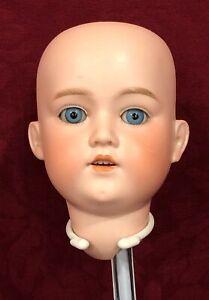 Antique German Bisque Doll Head - George Borgfeldt